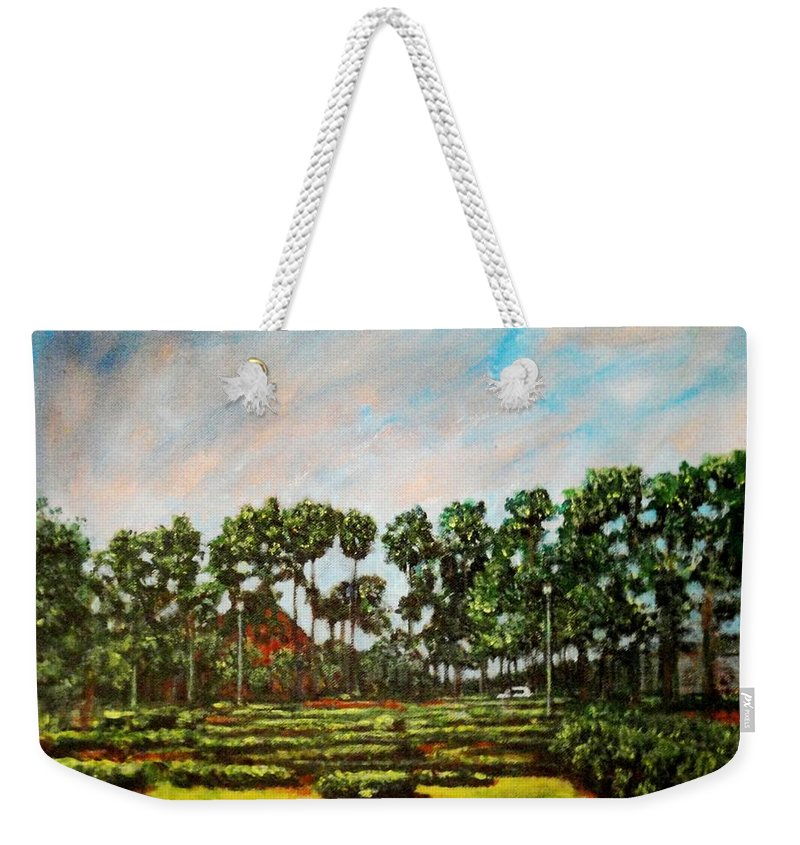 Landscape Weekender Tote Bag featuring the painting Btm Park by Usha Shantharam