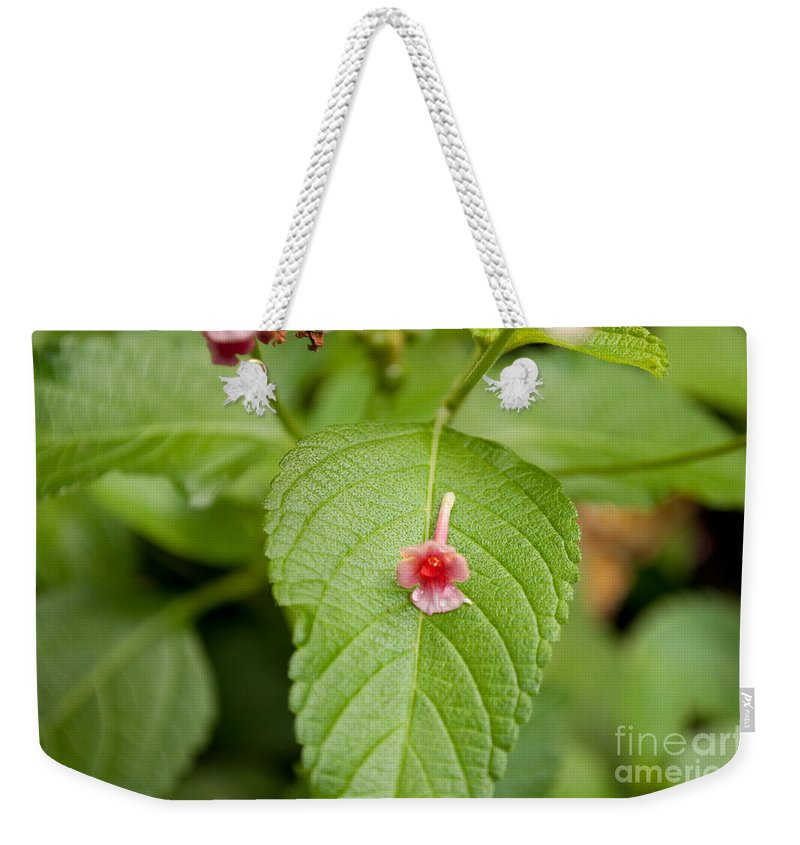 Green Weekender Tote Bag featuring the photograph Bud by Paulette B Wright