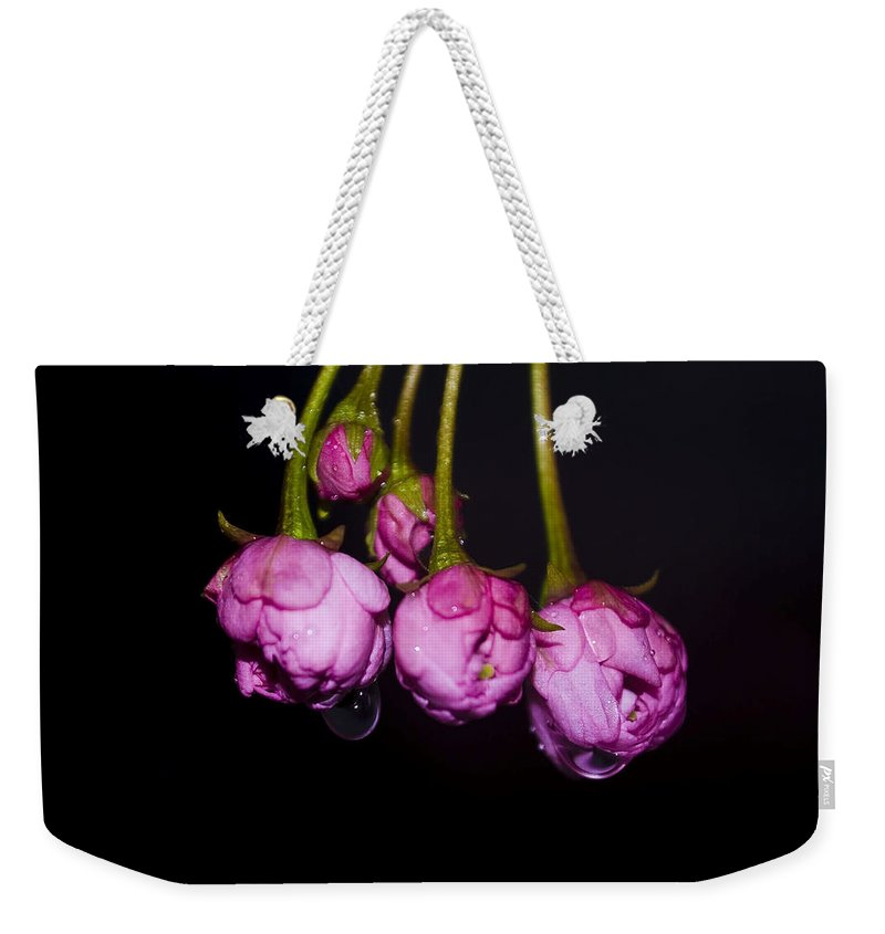 Flower Weekender Tote Bag featuring the photograph Buds by Svetlana Sewell
