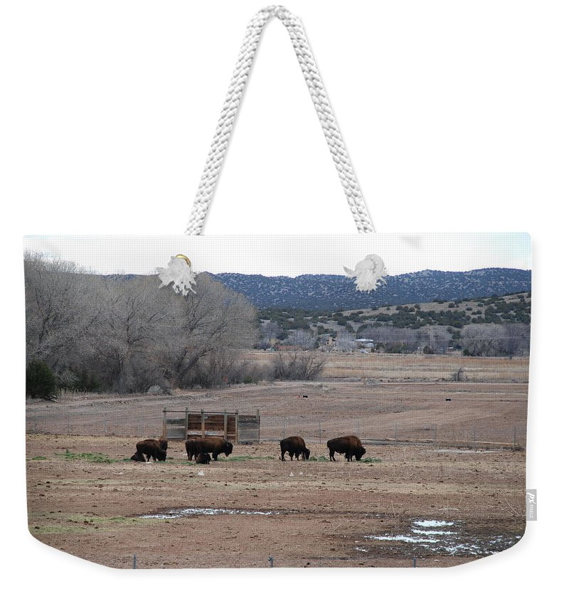 Buffalo Weekender Tote Bag featuring the photograph Buffalo New Mexico by Rob Hans
