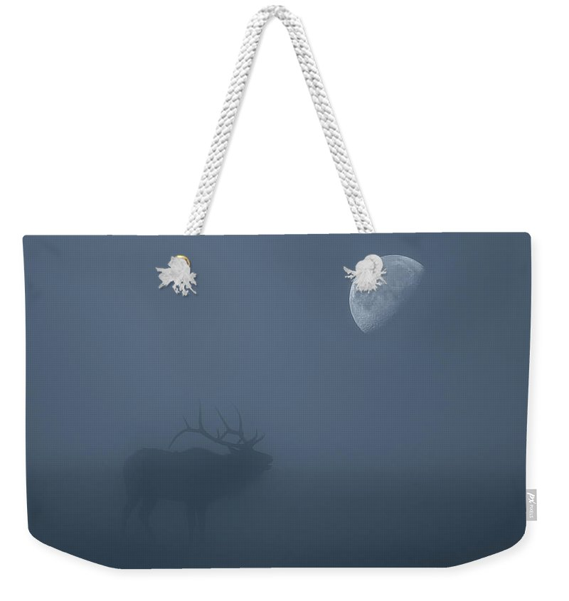 Elk Weekender Tote Bag featuring the photograph Bugle At The Moon by Darren White