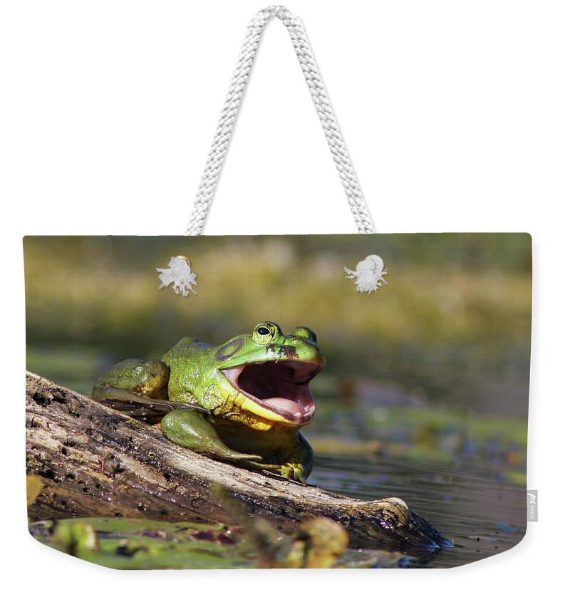 Amphibian Weekender Tote Bag featuring the photograph Bull Frog by Mircea Costina Photography