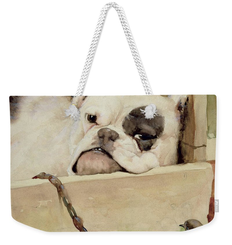 Bull Dog; Robin; Bird; Kennel; Pet Weekender Tote Bag featuring the painting Bulldog by Cecil Charles Windsor Aldin