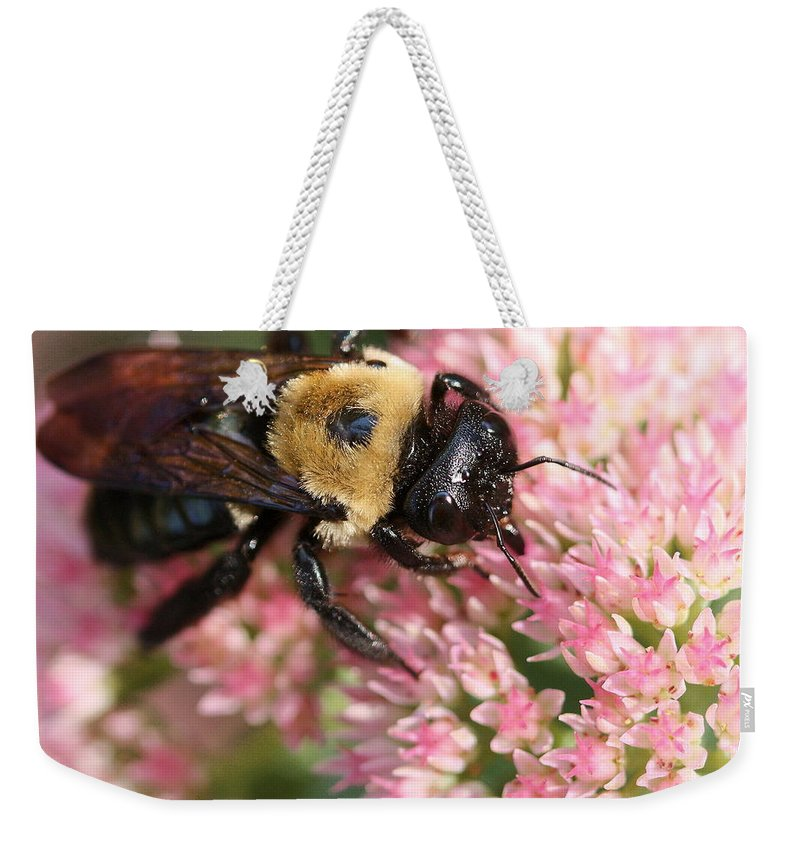Bee Weekender Tote Bag featuring the photograph Bumble Bee Macro by Angela Rath