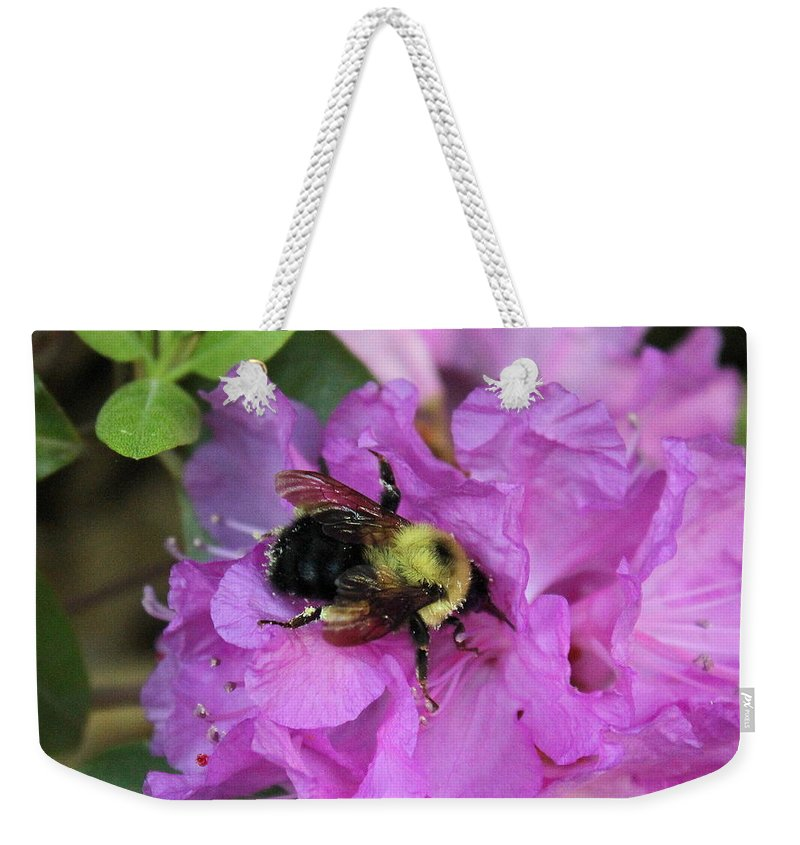 Bumble Bee Weekender Tote Bag featuring the photograph Bumble Bee On Rhododendron Blossoms by Anita Hiltz