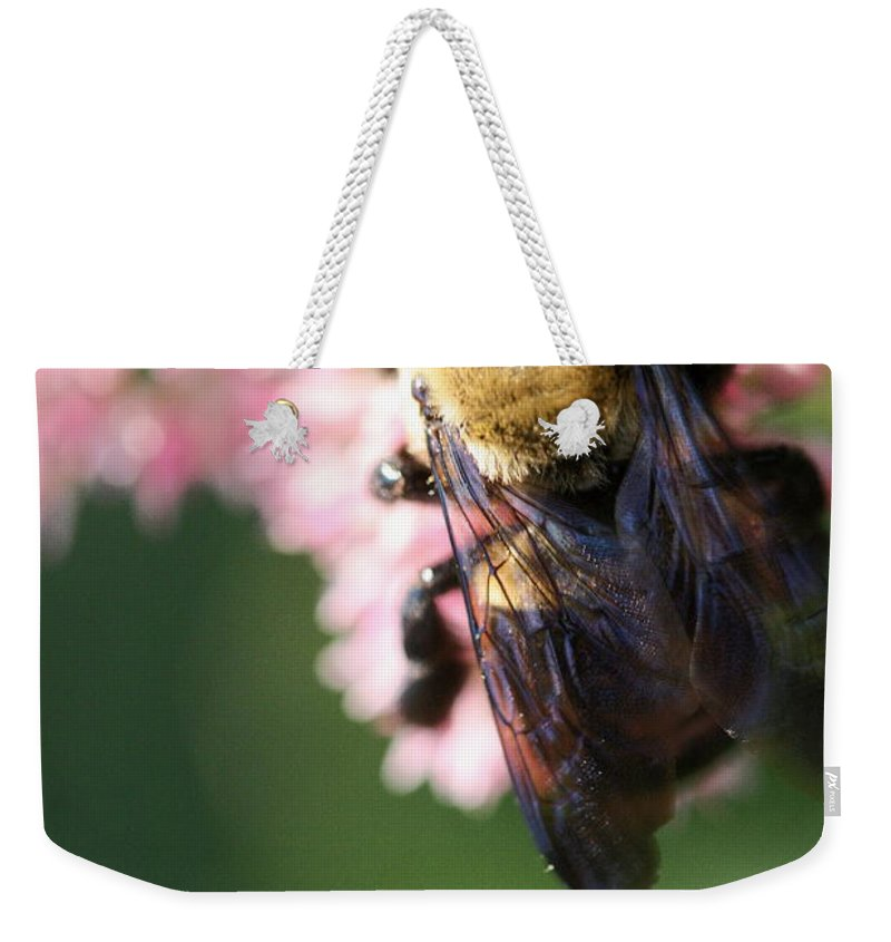 Bee Weekender Tote Bag featuring the photograph Bumble From Above by Angela Rath