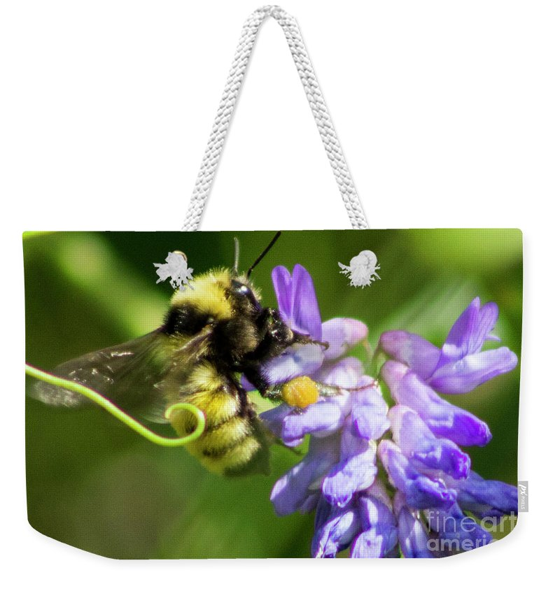 Bumblebee Weekender Tote Bag featuring the photograph Bumblebee On A Blue Giant Hyssop by Cecille Gagne