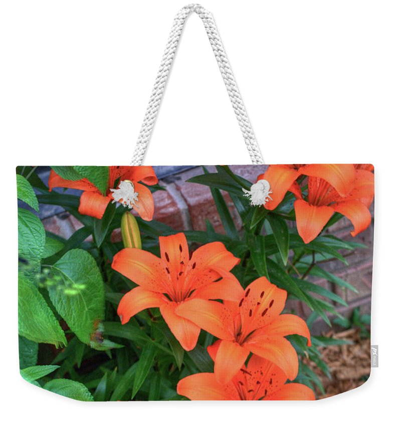 Bunch Weekender Tote Bag featuring the photograph Bunch Of Orange Lilies by Douglas Barnett