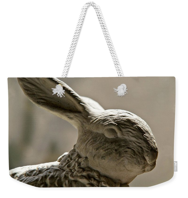 Bunny Weekender Tote Bag featuring the photograph Bunny by Christopher Holmes