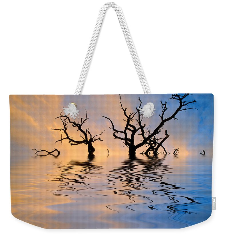Original Art Weekender Tote Bag featuring the photograph Slowly Sinking by Jerry McElroy