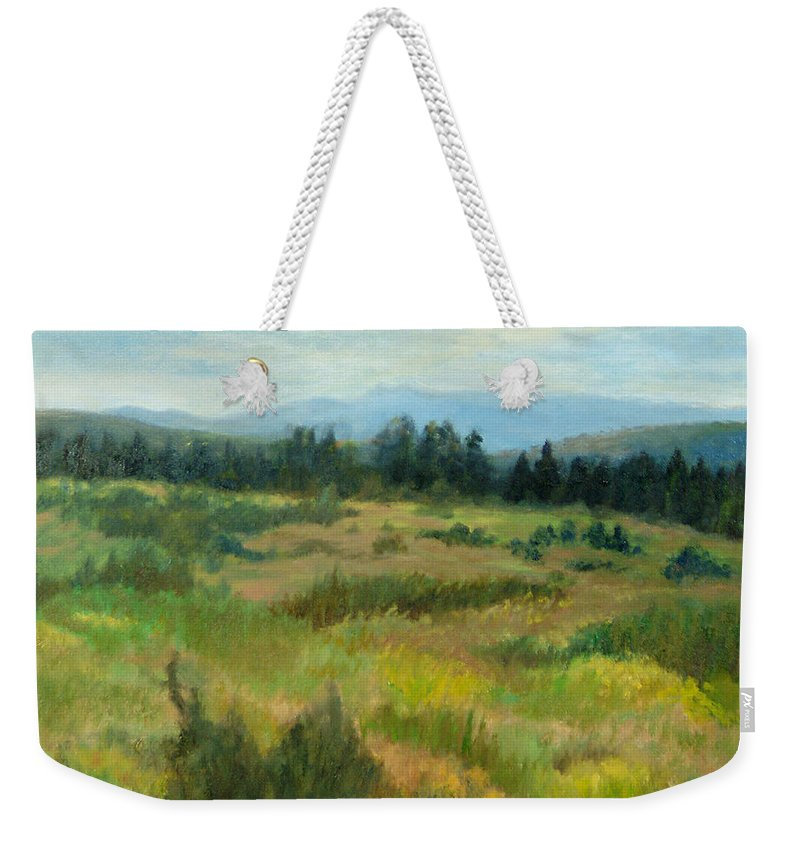 Landscape Weekender Tote Bag featuring the painting Burnt Mesa Trail by Phyllis Tarlow