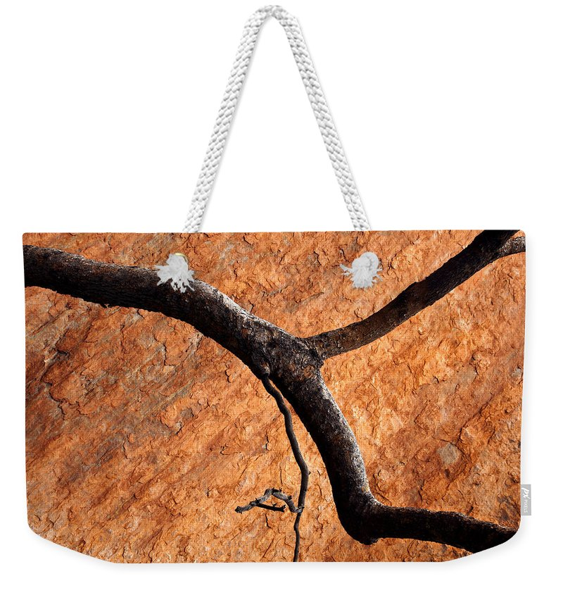 Gum Tree Weekender Tote Bag featuring the photograph Burnt Orange by Mike Dawson