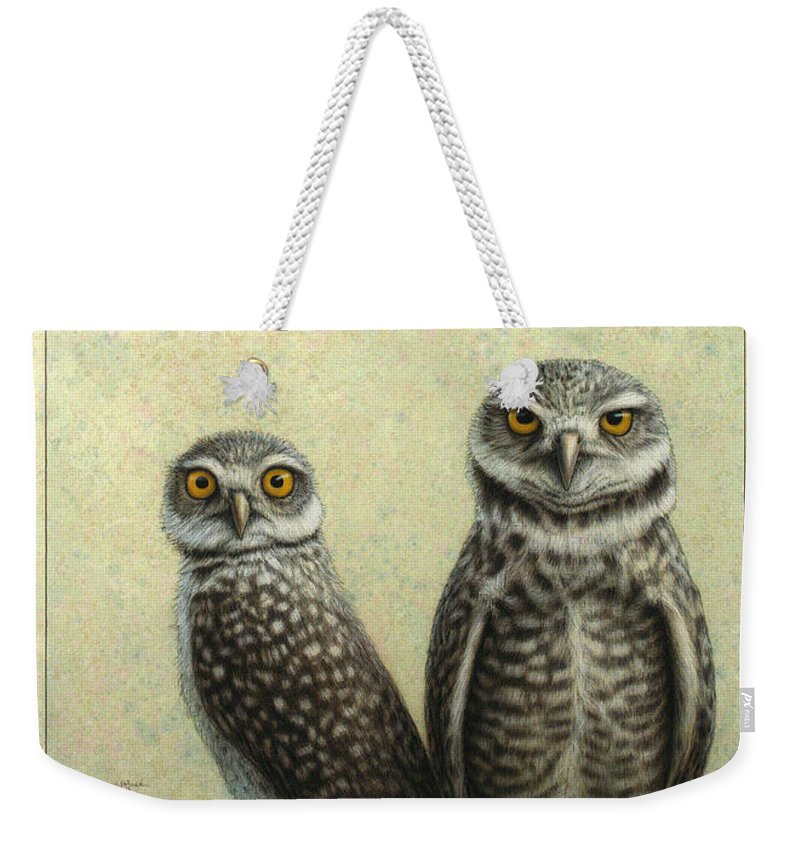 Owls Weekender Tote Bag featuring the painting Burrowing Owls by James W Johnson