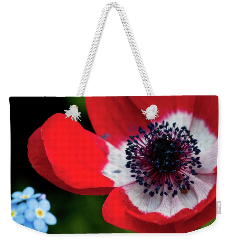 Blue Weekender Tote Bag featuring the photograph Burst Of Red by Trish Tritz