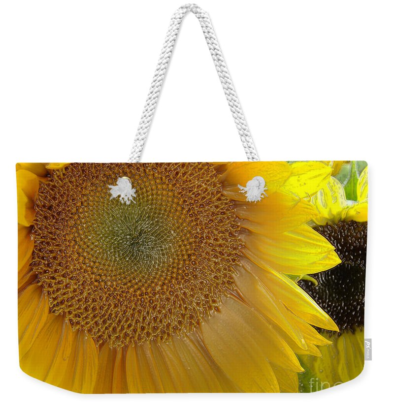 Sunshine Weekender Tote Bag featuring the photograph Burst Of Sunshine by Terry Anderson