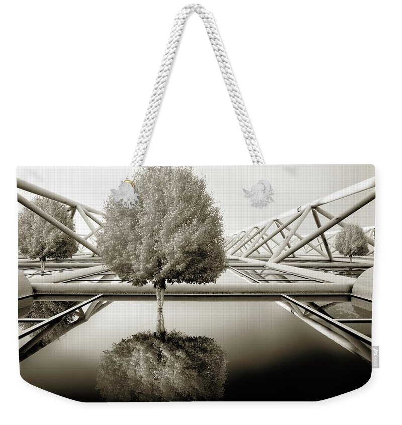 Abstract Weekender Tote Bag featuring the photograph Bushy Hair by Rachel Dunn