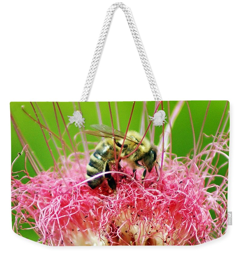 Nature Weekender Tote Bag featuring the photograph Busy Bee by Holly Kempe