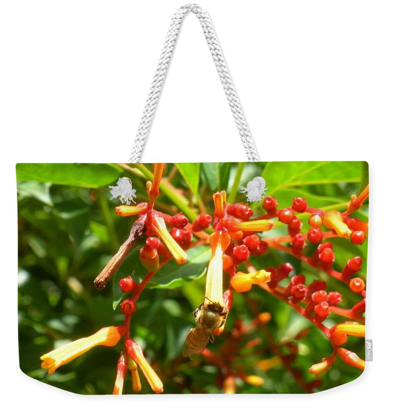 Bee Weekender Tote Bag featuring the photograph Busy Bee by Maria Bonnier-Perez