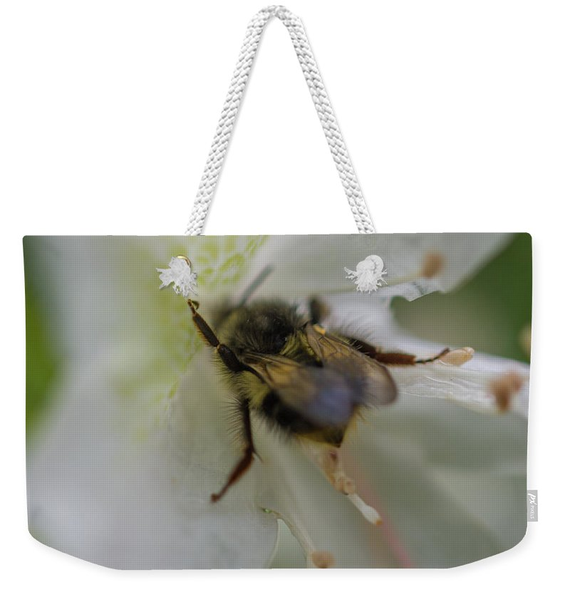Beautiful Weekender Tote Bag featuring the photograph Busy Bee by Michele James