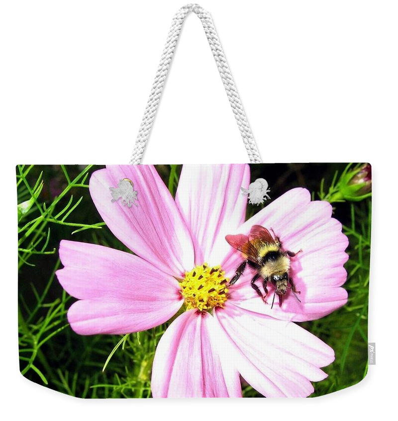 Bee Weekender Tote Bag featuring the photograph Busy Bee by Will Borden
