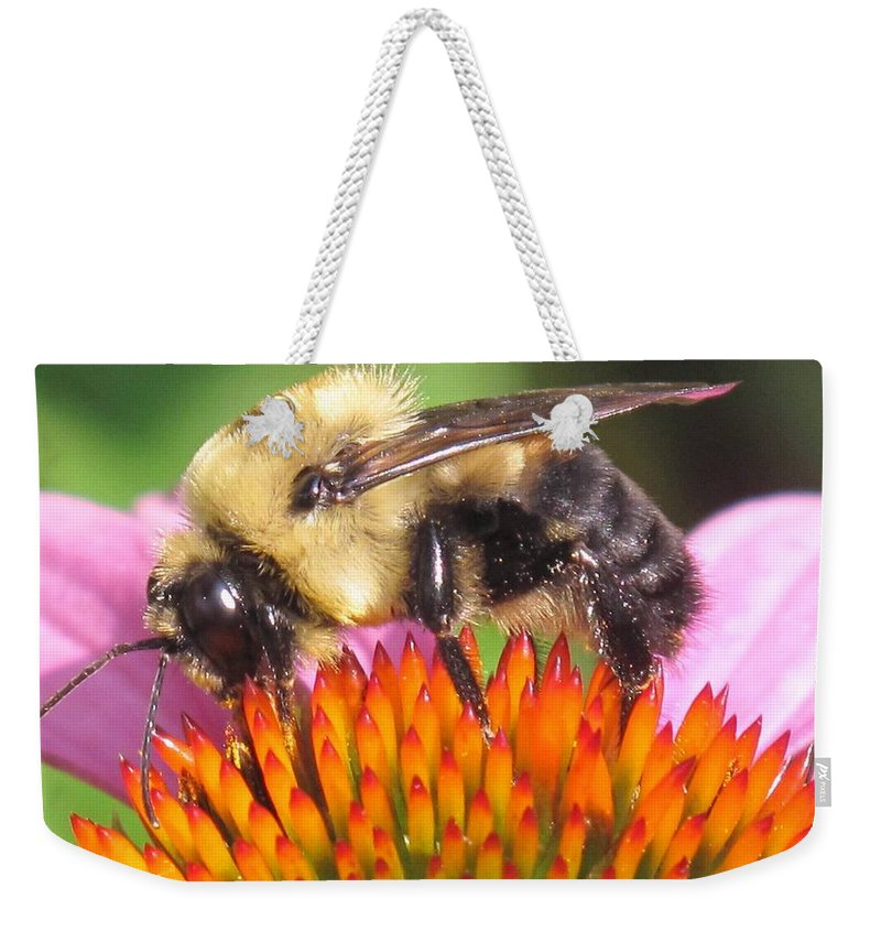 Bee Weekender Tote Bag featuring the photograph Busy by Ian MacDonald