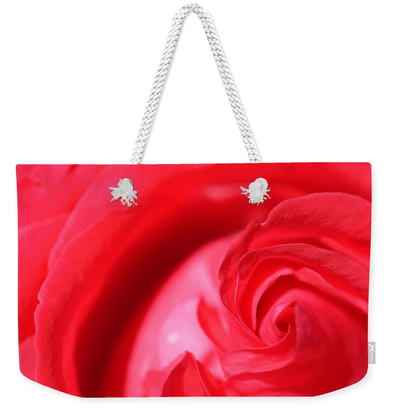 Rose Weekender Tote Bag featuring the photograph Butler Rose by Michael McGowan