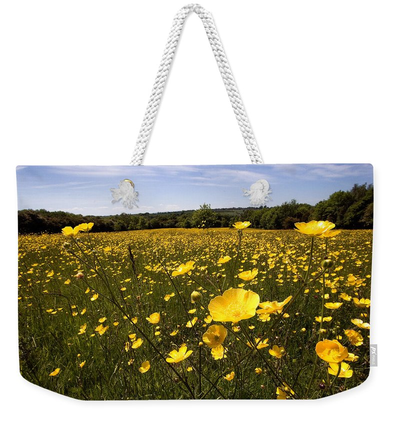 Buttercups Weekender Tote Bag featuring the photograph Buttercup Field by Bob Kemp