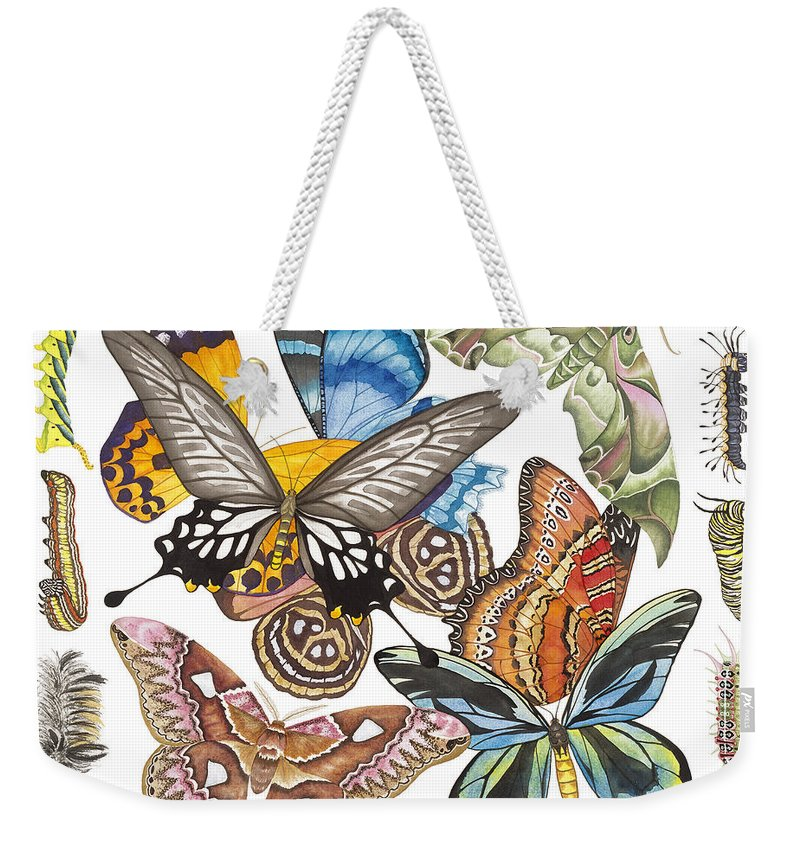 Butterflies Weekender Tote Bag featuring the painting Butterflies Moths Caterpillars by Lucy Arnold