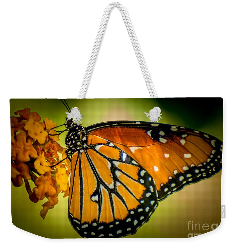 Butterfly Weekender Tote Bag featuring the photograph Butterfly 29 by Larry White