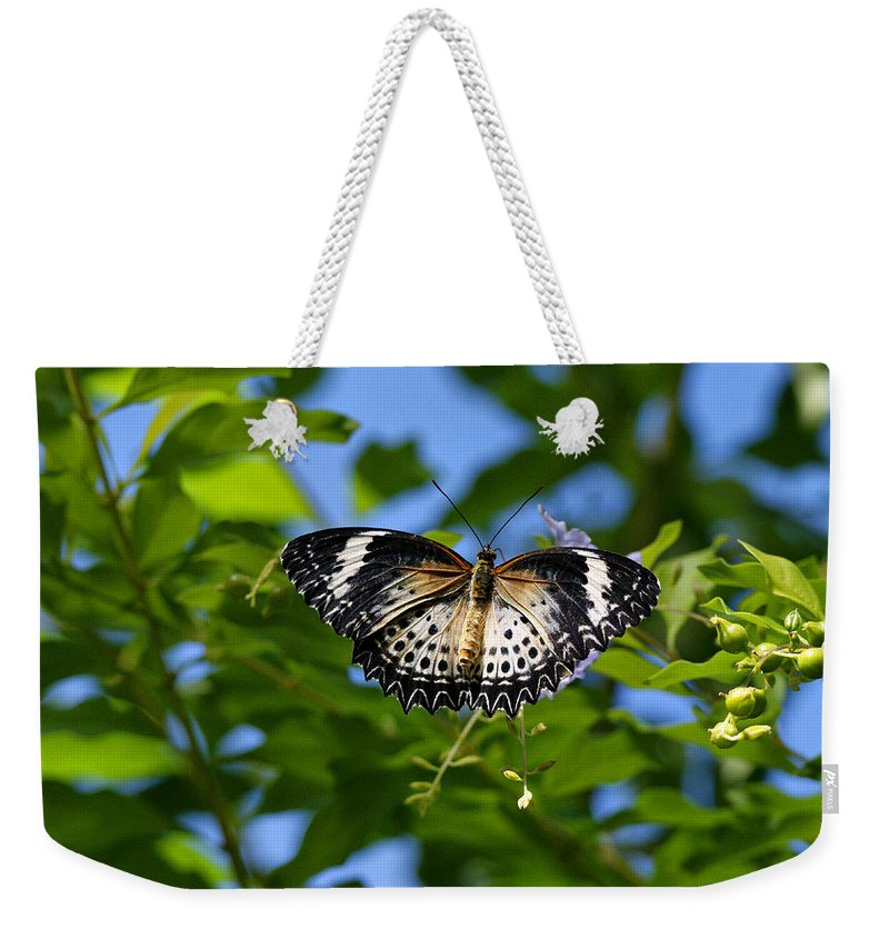 Butterfly Weekender Tote Bag featuring the photograph Butterfly And Blue Sky by Sandy Keeton