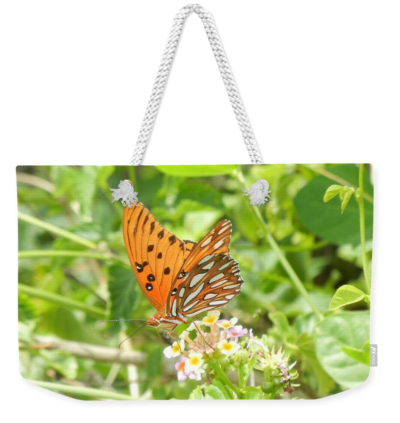 Butterfly Weekender Tote Bag featuring the photograph Butterfly by Brian McGary