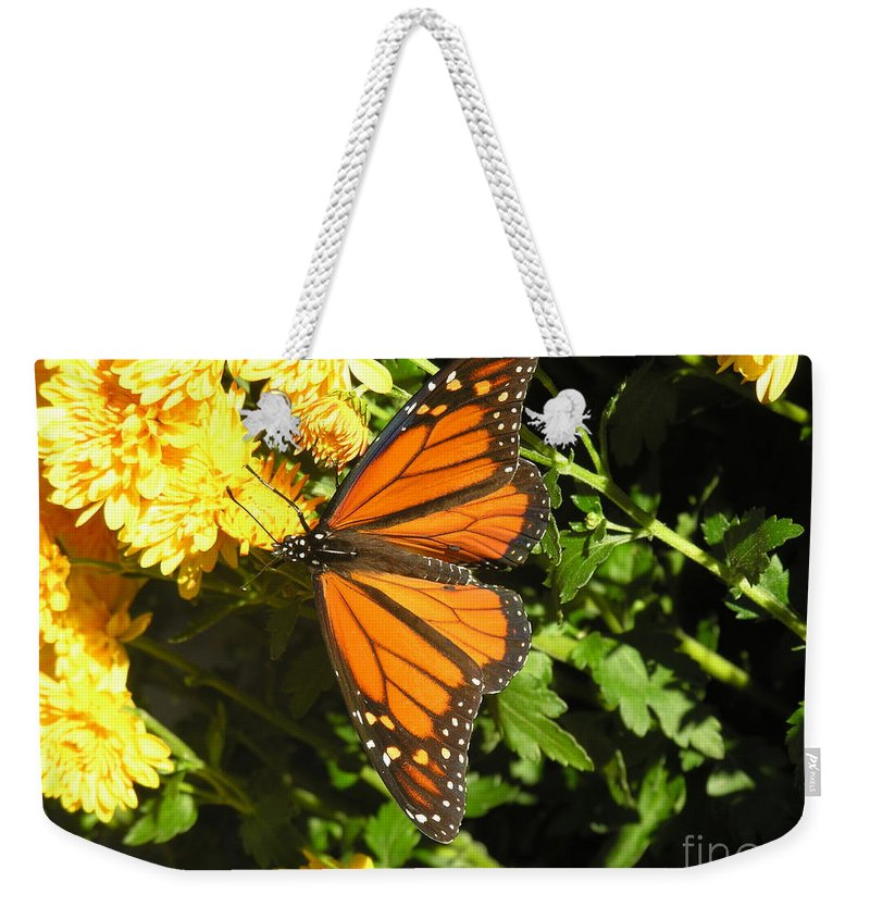 Butterfly Weekender Tote Bag featuring the photograph Butterfly by Diane Greco-Lesser
