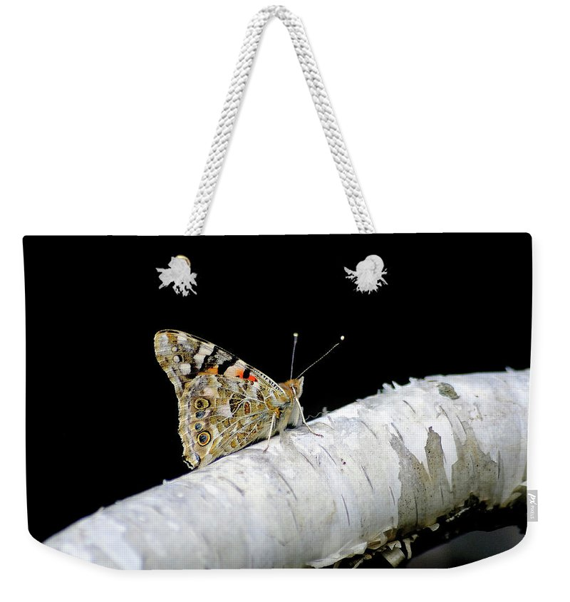 Farfalla Weekender Tote Bag featuring the photograph Butterfly by Ilaria Andreucci