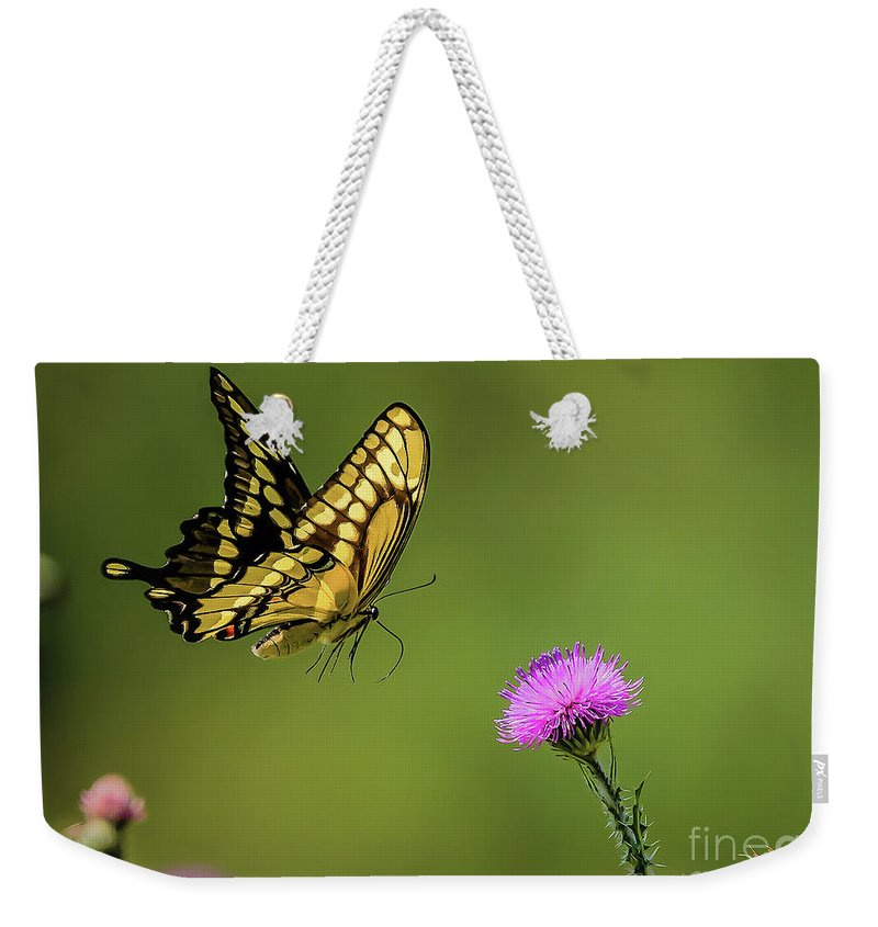 Butterfly Weekender Tote Bag featuring the photograph Butterfly In Flight by Monica Hall