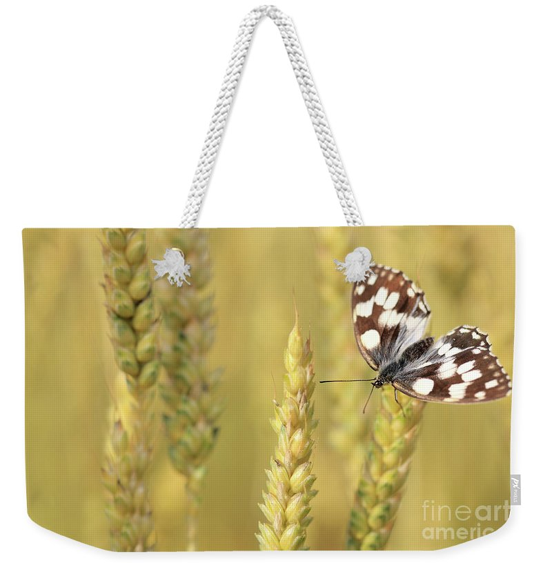 Butterfly Weekender Tote Bag featuring the photograph Butterfly by Jana Behr
