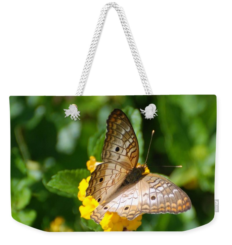 Butterfly Weekender Tote Bag featuring the photograph Butterfly Land by Rob Hans