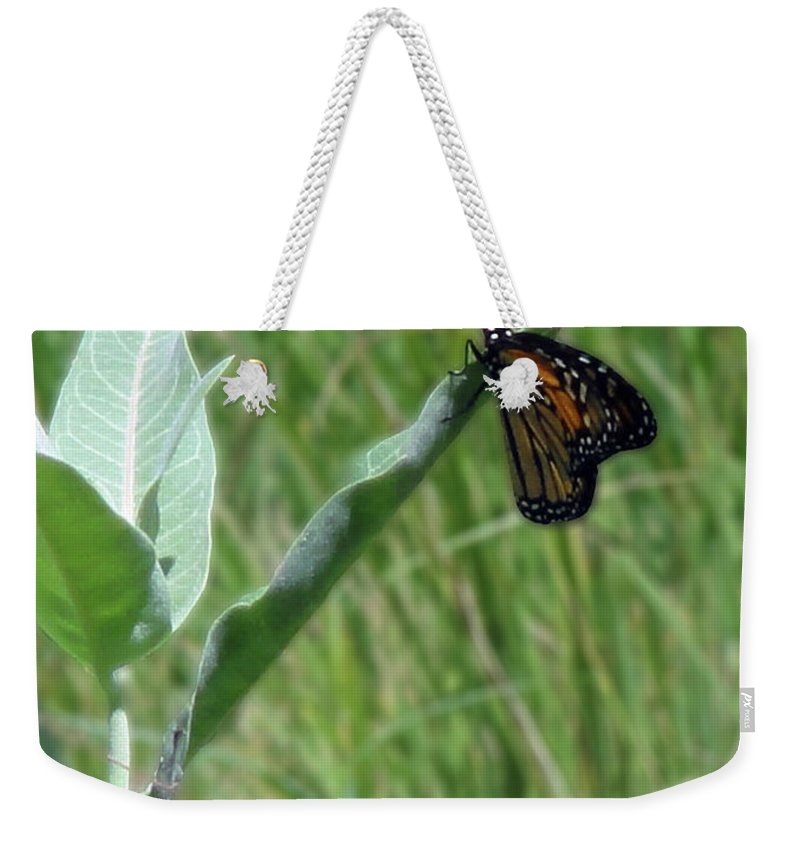 Butterfly Weekender Tote Bag featuring the photograph Butterfly by Lara Ekdahl