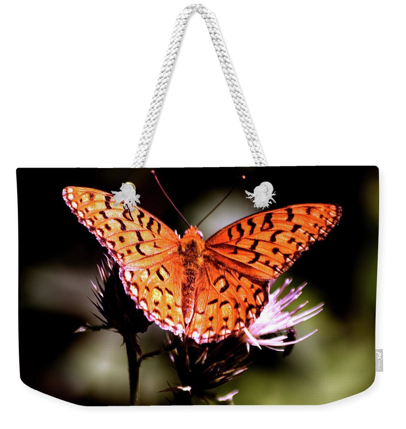 Butterfly Weekender Tote Bag featuring the photograph Butterfly by Mark Ivins
