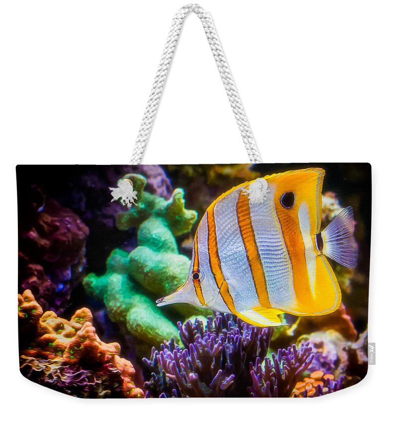 Animals Weekender Tote Bag featuring the photograph Butterfly Of The Sea by Rikk Flohr