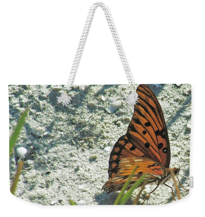 Orange Weekender Tote Bag featuring the photograph Butterfly On Beach by Jonathan Hill