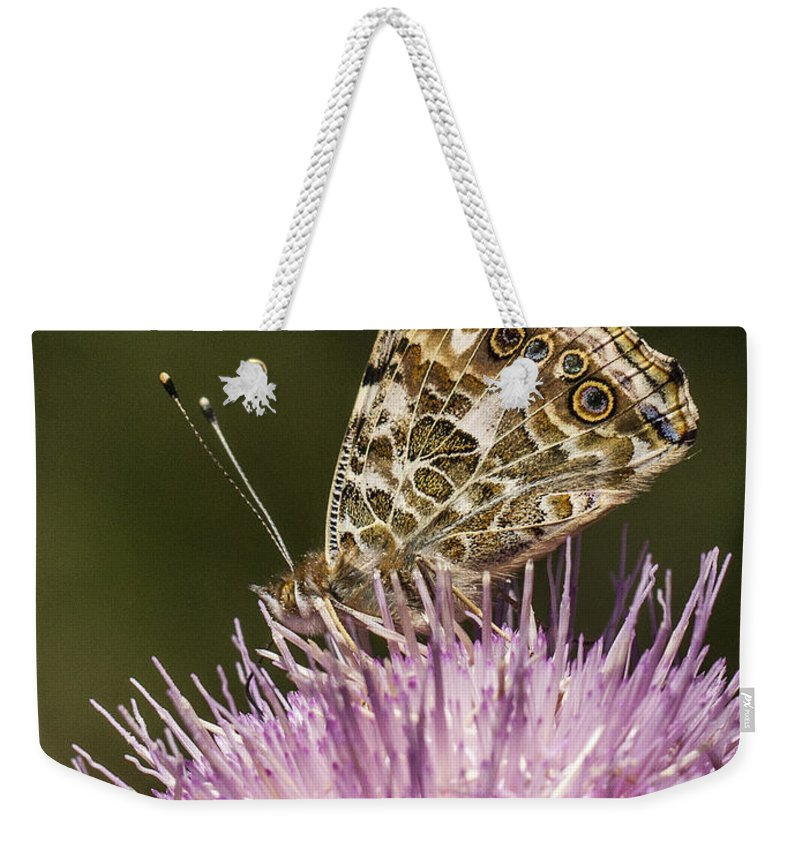 Color Weekender Tote Bag featuring the photograph Butterfly On Thistle by Jean Noren