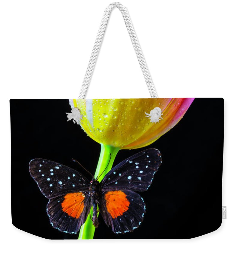 Green Weekender Tote Bag featuring the photograph Butterfly On Yellow Pink Tulip by Garry Gay