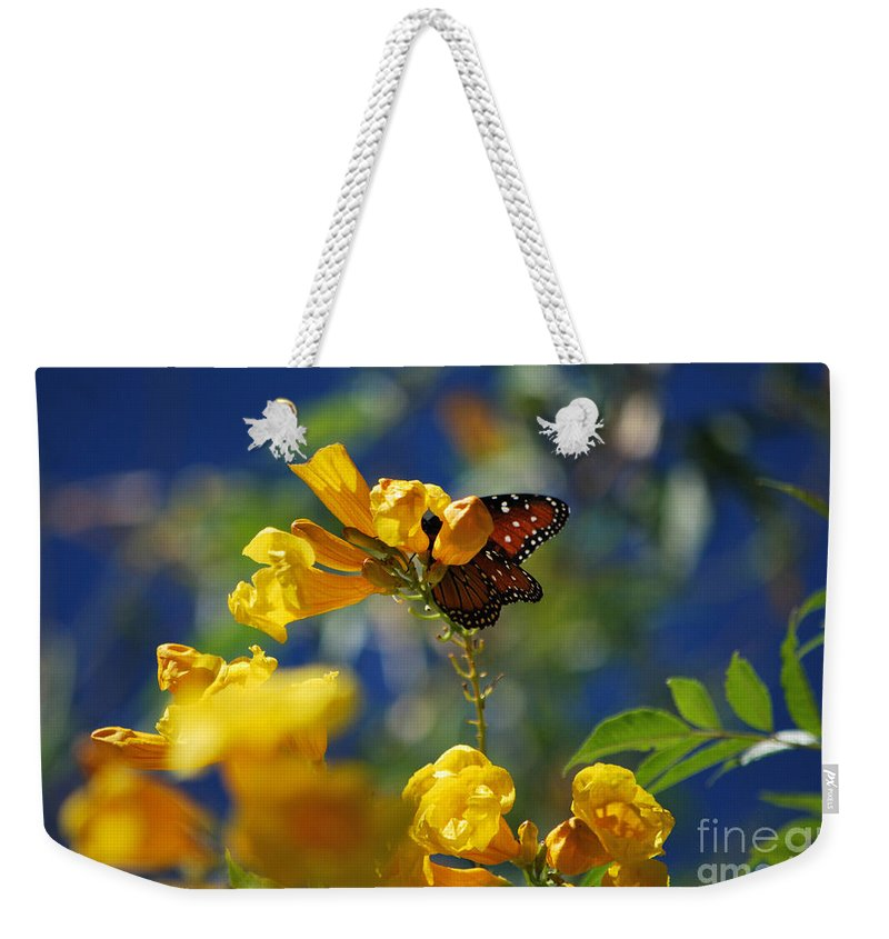 Butterfly Weekender Tote Bag featuring the photograph Butterfly Pollinating Flowers by Donna Greene
