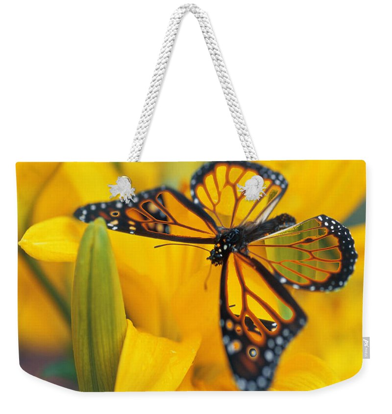 Butterfly Weekender Tote Bag featuring the digital art Butterfly by Tim Allen