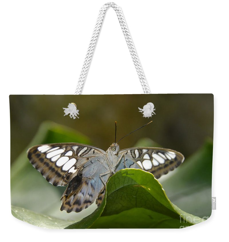 Pretty Weekender Tote Bag featuring the photograph Butterfly Watching by David Lee Thompson