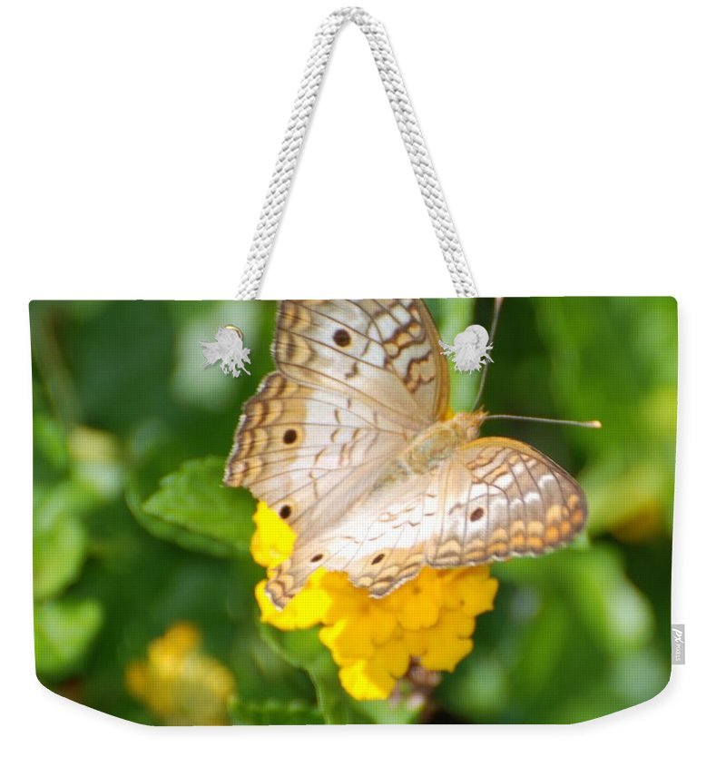 Butterfly Weekender Tote Bag featuring the photograph Butterflywith Dots by Rob Hans