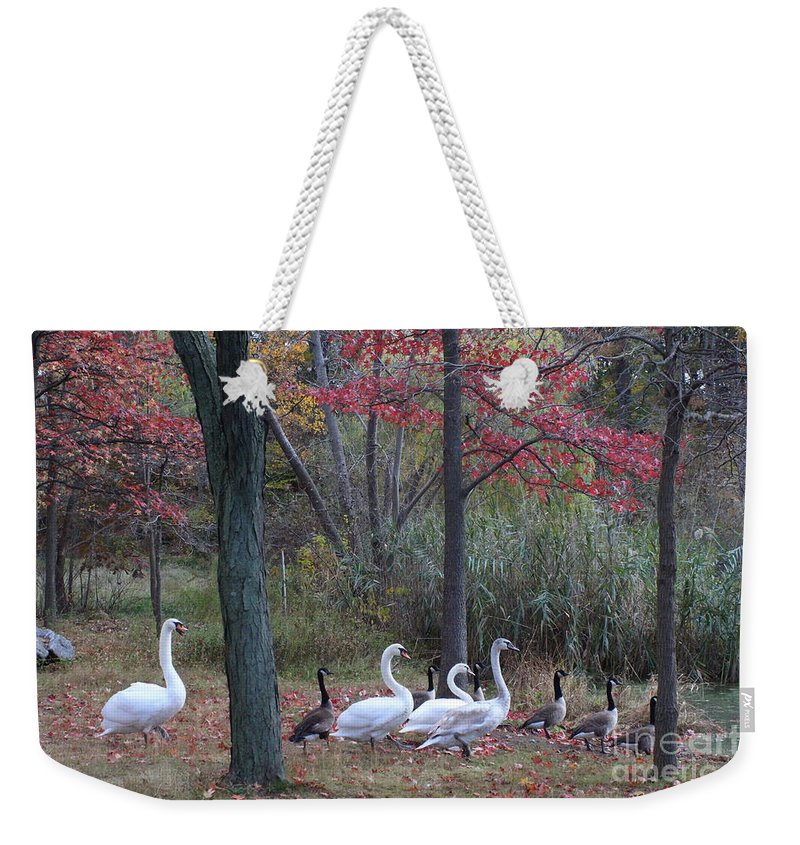 Autumn Weekender Tote Bag featuring the photograph By The Lake by Dora Sofia Caputo Photographic Design and Fine Art