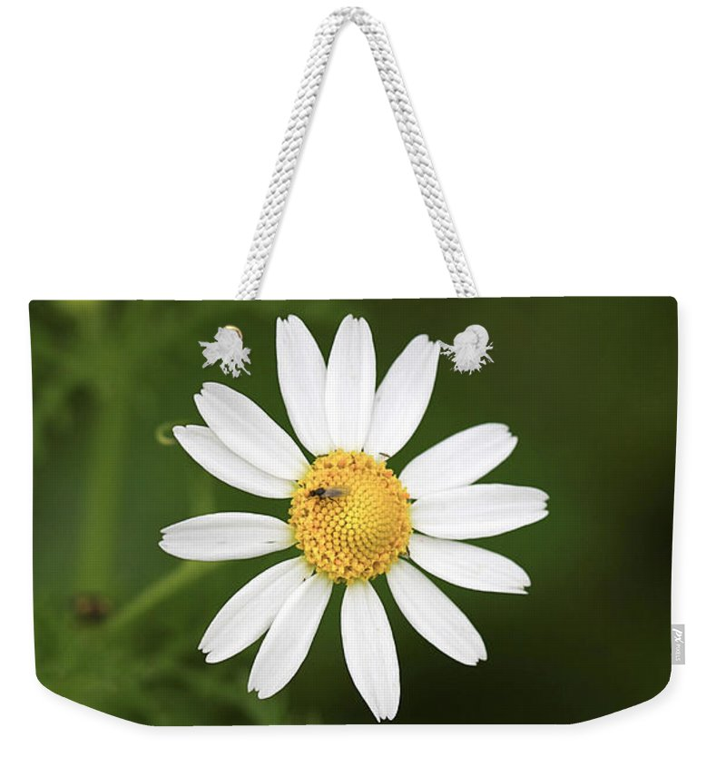 Flower Weekender Tote Bag featuring the photograph By The Pond by Deborah Benoit