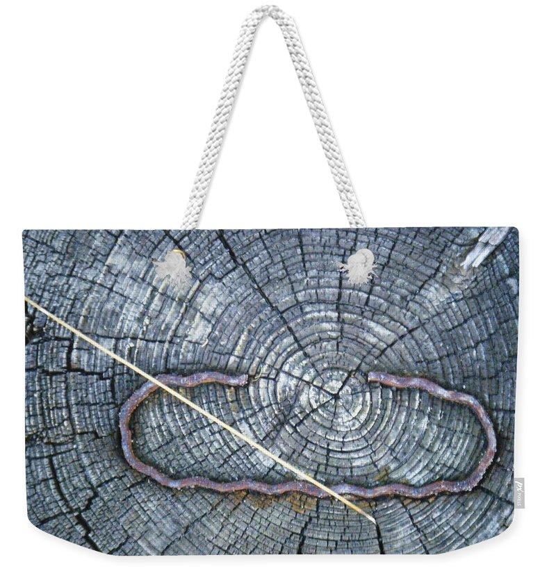 Tamara Kulish Weekender Tote Bag featuring the photograph C Embedded In The Log by Tamara Kulish