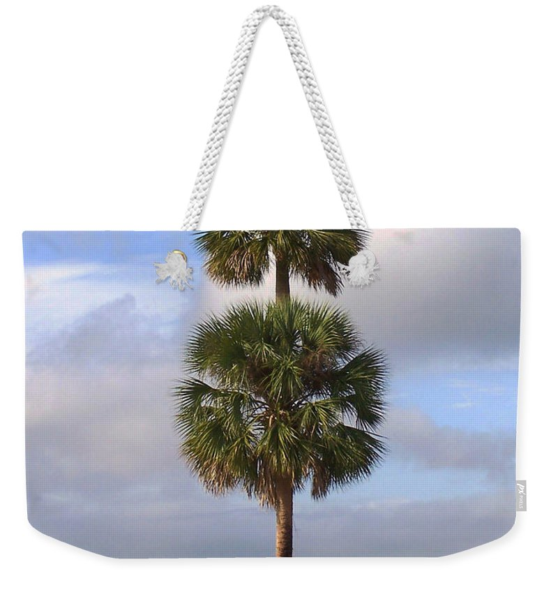 Nature Weekender Tote Bag featuring the photograph Cabbage Palms by Peg Urban